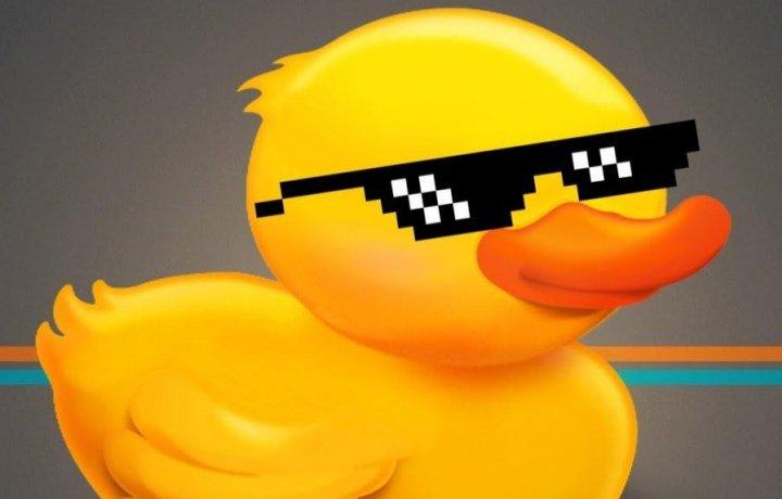 Квесты и карантин. Кря, одним словом. Интервью с организатором квестов Black Duck.
